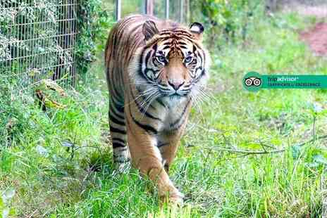 Safari Zoo - Family entry for two adults and two children on a weekday or weekend to Safari Zoo - Save 55%