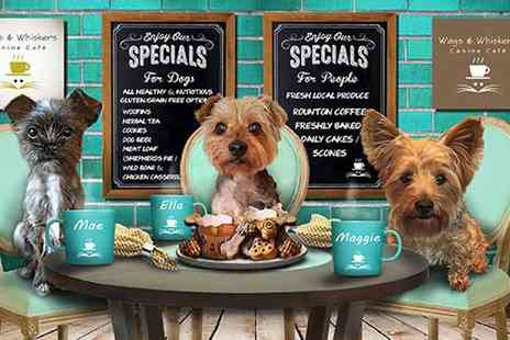 Wags & Whiskers Canine Cafe - Afternoon tea for two or four with dog treats for two dogs - Save 44%