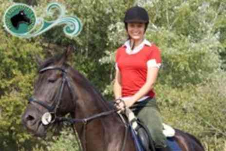 Holly Equestrian Centre - Two 30 minute private weekday riding lessons or two 60 minute group weekend lessons - Save 60%