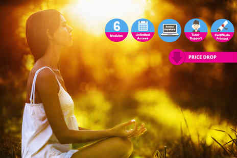 Skill Success - Mindfulness meditation course - Save 92%