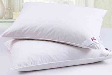 Groupon Goods Global GmbH - Two or Four Goose Feather and Down Pillows - Save 78%