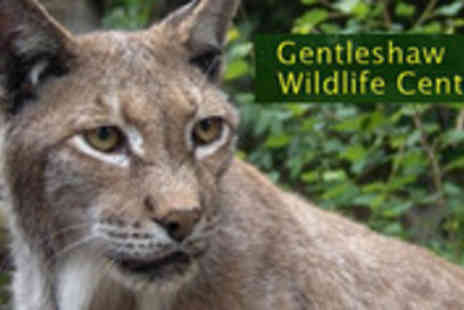Gentleshaw Wildlife Centre - Entry to Gentleshaw Wildlife Centre for four plus two kids activity packs - Save 55%