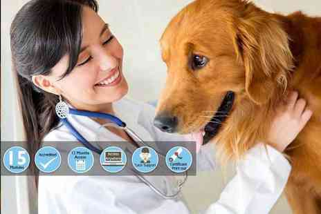 Holly & Hugo - Veterinary support assistant course - Save 86%