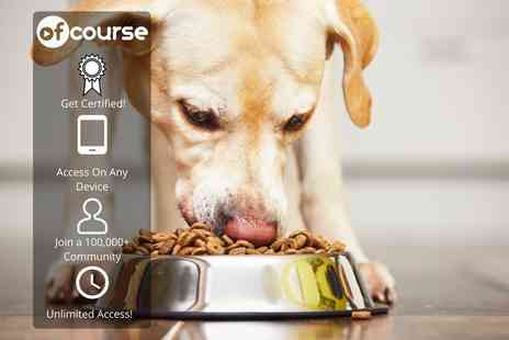 OfCourse - Online canine nutrition course - Save 85%