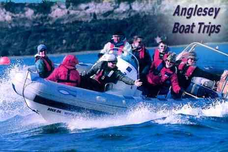 Anglesey Boat Trips - 90 Minute Power boating Experience For Two - Save 50%