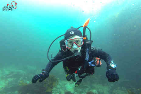Red Duck Diving - SScuba diving taster session in the sea for one or two - Save 48%