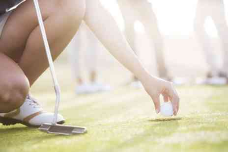 Tim Jenkins Golf - Two 40 Minute Golf Lessons with PGA Professional and One Wedge Fitting - Save 72%