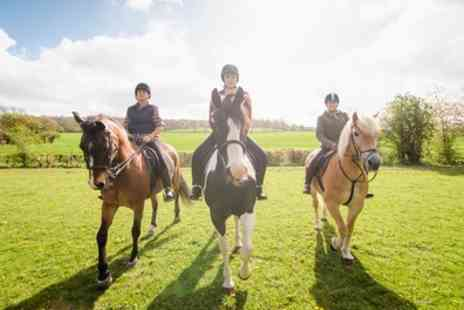 Grenoside Equestrian Centre - One, Three or Five Horse Riding Sessions - Save 27%