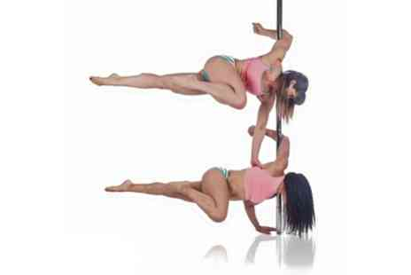 PoleKat Fitness - Four, Six or Eight Pole Fitness or Aerial Hoop Lessons for One or Two - Save 62%