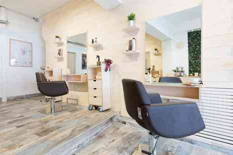 Ecohair - Hair wash and cut, conditioning treatment and blow dry with the director or wash, cut and root colour touch up - Save 77%