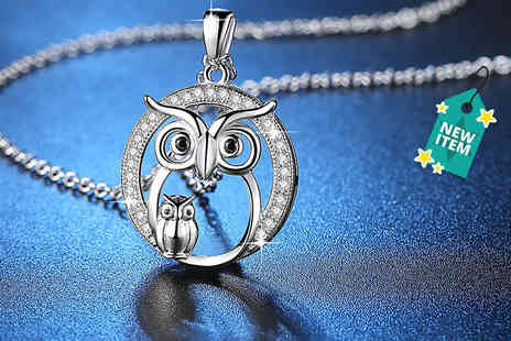 GameChanger Associates - Crystal owl necklace - Save 76%