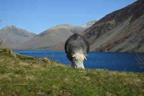 The Mountain Goat - High Adventure Day Tour from Keswick - Save 0%