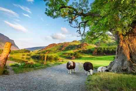 Timberbush Tours - Four Day York, Durham and the Lake District Tour from Edinburgh - Save 0%