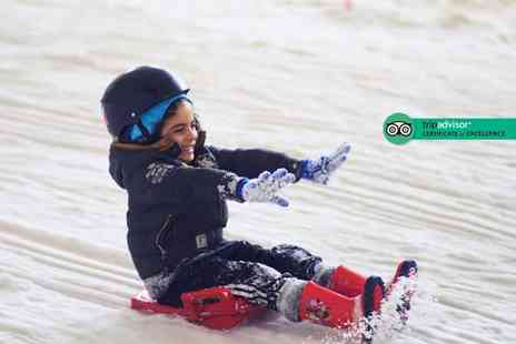 Snow Factor - 30 minute sledging session for one person - Save 50%