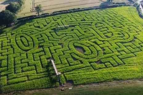 Maize Maze Cawthorne - Entry for Two or Family of Four to Maize Maze - Save 50%