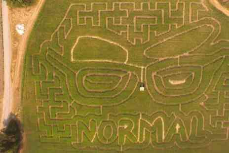 Wiveton Hall - Giant Maize Maze Entry for Up to Four - Save 42%
