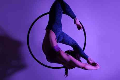 PoleKat Fitness - Four pole fitness or aerial hoop lessons - Save 65%