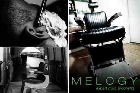 Melogy - Deluxe Wet Shave, Hair Treatment, Groom and Finish With Haircut and Consultation - Save 71%