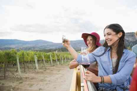 Into the Blue - Guided Vineyard Tour and Tasting for Two - Save 21%