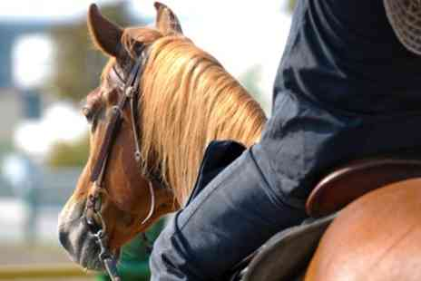 Tannoch Stables - 60 Minute Group or Individual Indoor Riding Lesson - Save 52%