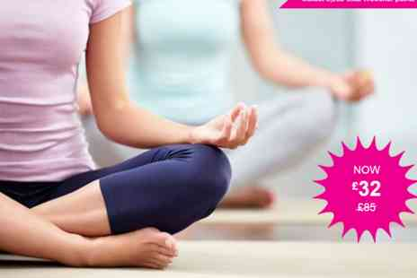 Hot Yoga Yoga - Private group yoga, 90min bikram hot yoga class up to 4 people - Save 62%