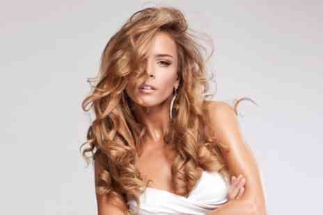 Harmony Health & Beauty - Restyle and Blow Dry or Colour, Highlights or Balayage with Cut and Blow Dry - Save 45%