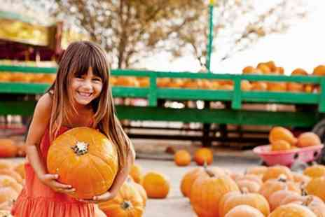 Pumpkin Picking Patch - Up to £5 or £10 Worth of Pumpkins, Wand and Soft Drink for One or Two Children - Save 0%