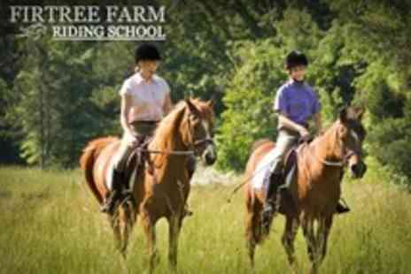 Firtree Farm Riding School - Horse Riding For One - Save 60%
