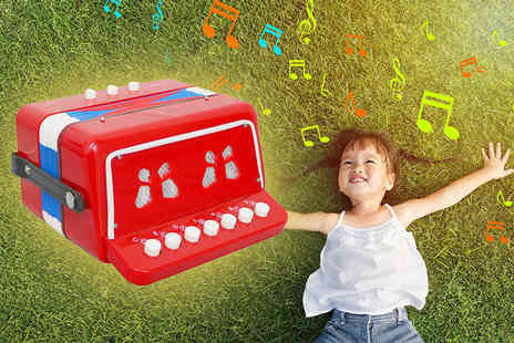 Who Needs Shops - Childrens toy accordion - Save 72%
