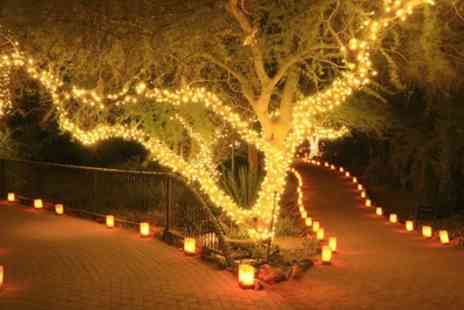 Groupon Goods Global GmbH - Up to Four Strings of 50, 100 or 200 Led Solar Powered Fairy Lights - Save 70%
