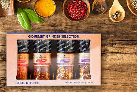 The Silk Route Spice Company - Gourmet spice grinder gift set - Save 59%