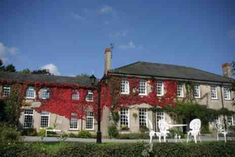Ty Newydd Country Hotel - Double Room with Breakfast and Dinner, Bottle of Wine and Tea Once per Stay - Save 19%