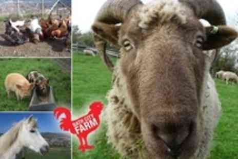 Bath City Farm - Family Entry to Bath City Farm With Animal Feed, Drinks and Cake - Save 50%