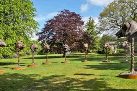 Yorkshire Sculpture Park - Brunch & parking for 2 - Save 45%