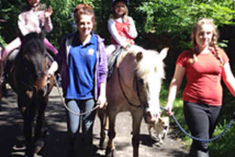 Fordbank Equicentre - Hour Long Horse Riding Experience - Save 60%