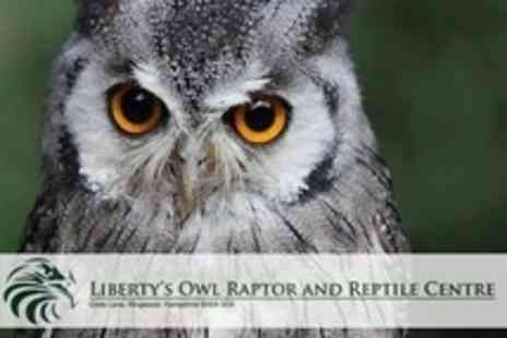 Liberty's Owl, Raptor and Reptile Centre - Owl Handling and Flying Activity With All Day Park Admission For Child from £18 or Adult from £23 at Liberty's Owl, Raptor and Reptile Centre (Up to 75% Off) - Save 75%