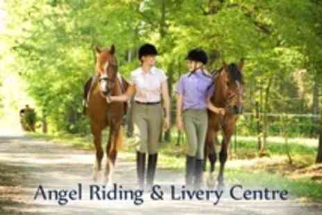 Angel Livery and Pony Club - One Hour Horse Riding Lesson For Two - Save 77%