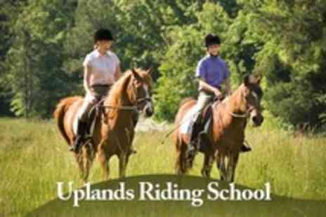 Uplands Riding School - Two Hour Horse Riding Experience Including Lesson or Hack For One - Save 27%