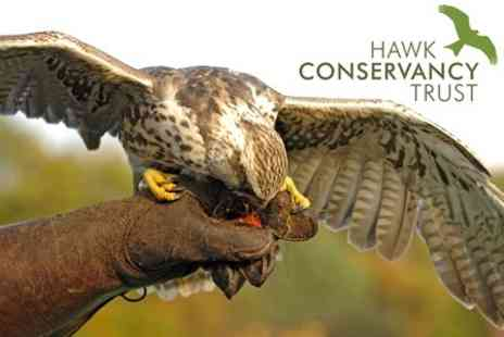 Hawk Conservancy Trust - Full Day Entrance For Two - Save 62%