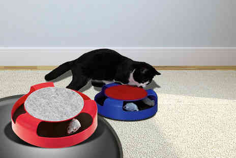 London Exchain Store - Catch the Mouse cat toy get your claws stuck - Save 73%