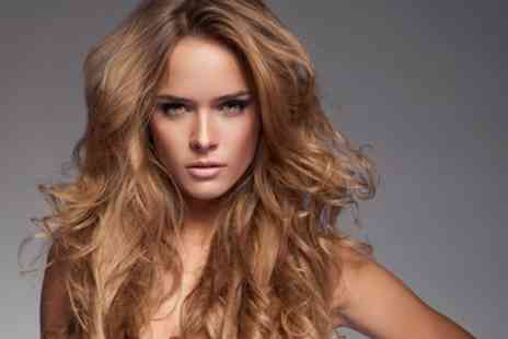 Hello Gorgeous - Wash, Cut, Blow Dry and Condition with Optional Colour or Highlights - Save 56%