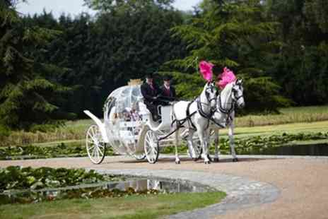 Kent Carriage Horses - Horse Carriage Ride for One or Two or Private Fairy Tale Carriage Hire - Save 52%