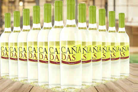 Casa de Vinos Finos - Selection of 12 Bottles of Red or White Tierra de Castilla Spanish Wine - Save 70%