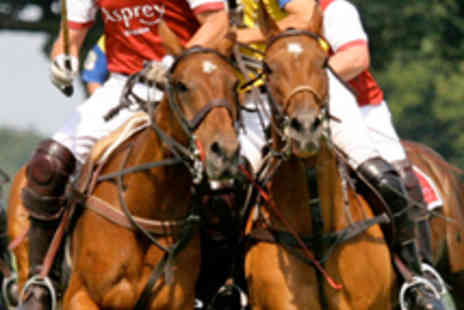Royal County of Berkshire Polo Club - Two Tickets to 'Polo Festival' on August 11 - Save 59%