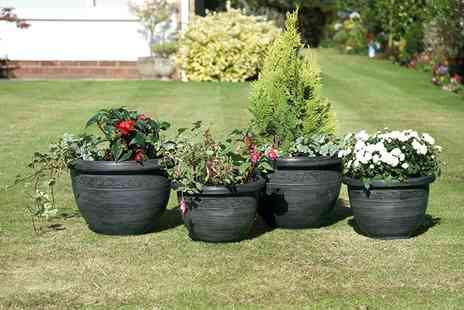 Groupon Goods Global GmbH - Three or Four Packs of Greenhurst Planters or Fence Panels - Save 0%