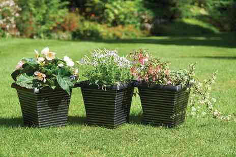 Groupon Goods Global GmbH - Two, Three of Four Greenhurst Gablemere Planters - Save 0%