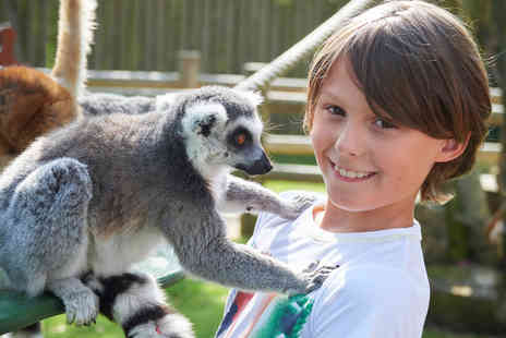 Drusillas Park - Get up close and personal to a choice of Animal Encounter - Save 0%