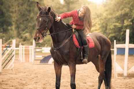 Horse Riding Surrey - 90 or 120 Minute Horse Hacking - Save 41%