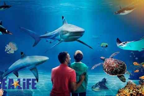 SEA LIFE - Standard Admission Ticket with Behind the Scenes Tour for Up to Four - Save 42%