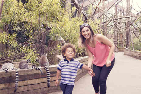 ZSL London Zoo - Tickets for Two Adults and One Child - Save 0%